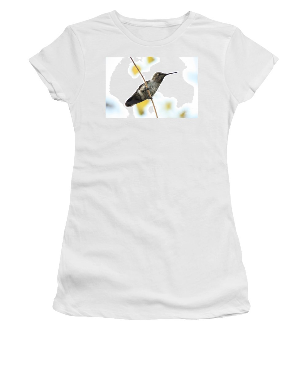 Hummingbird Women's T-Shirt (Athletic Fit) featuring the photograph Hummingbird On Tightrope by Carol Groenen