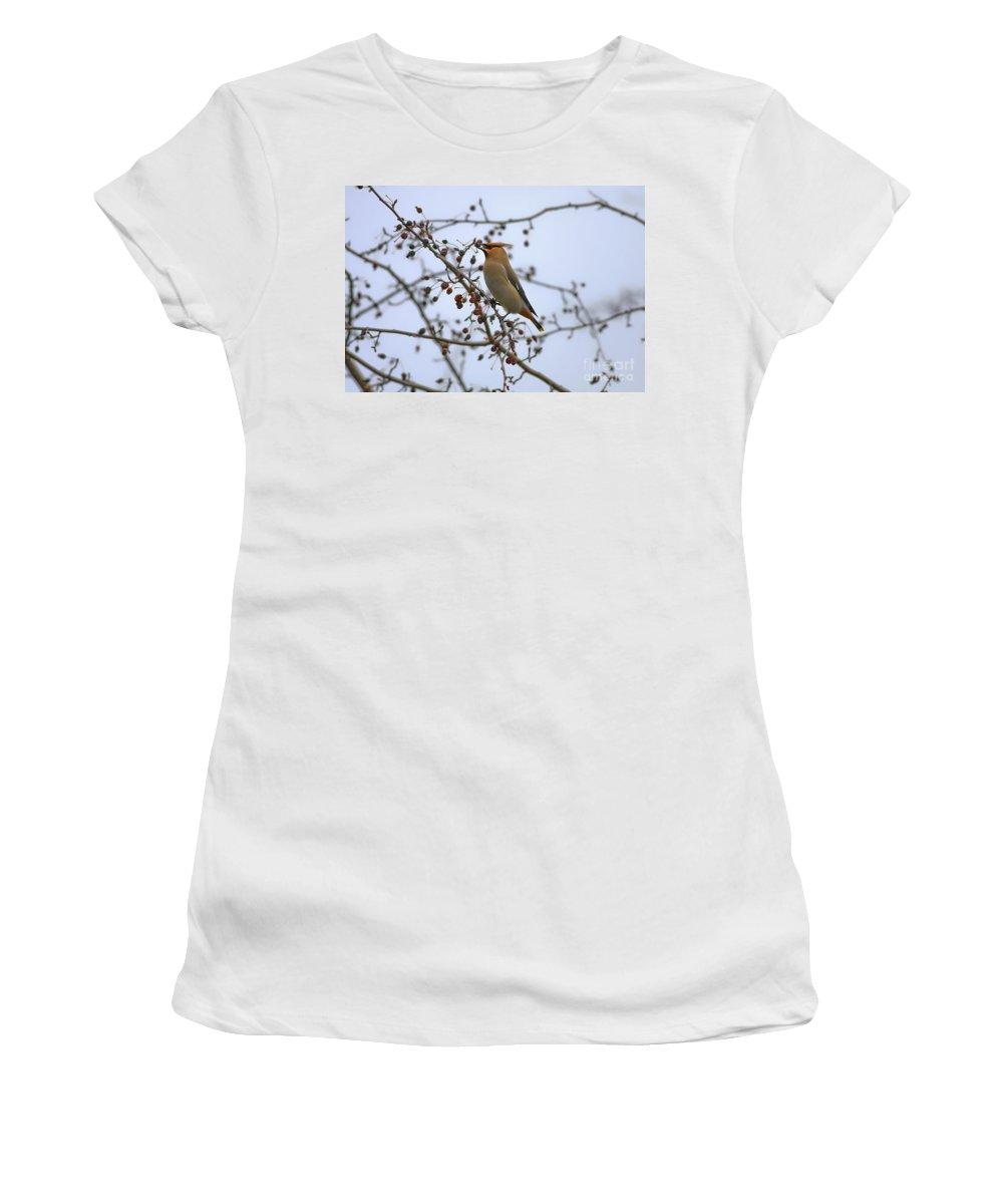 Bird Women's T-Shirt featuring the photograph I Got It by Deborah Benoit