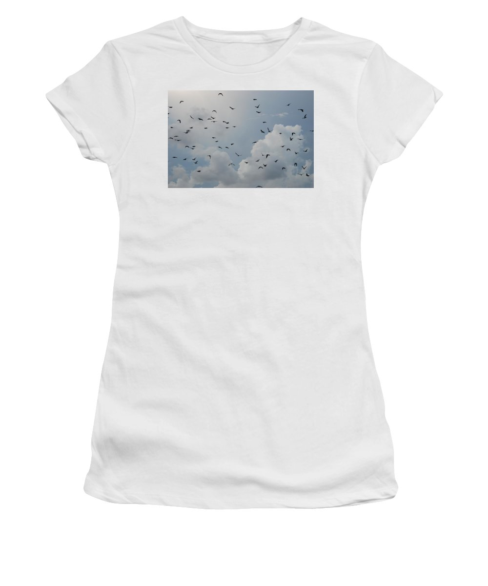 Birds Women's T-Shirt (Athletic Fit) featuring the photograph In Flight by Rob Hans