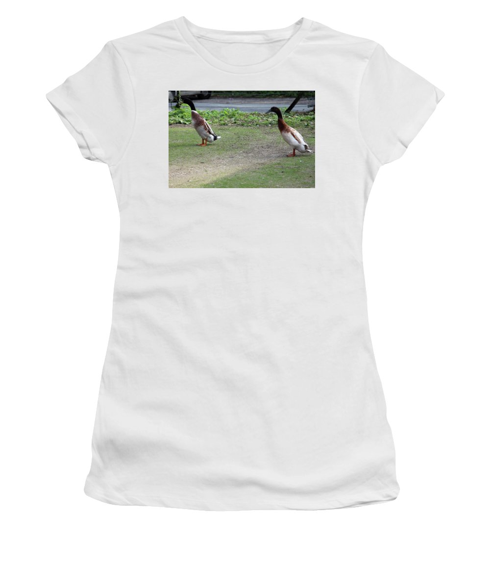 Duck Women's T-Shirt (Athletic Fit) featuring the photograph Indian Runner Ducks by Dave Philp