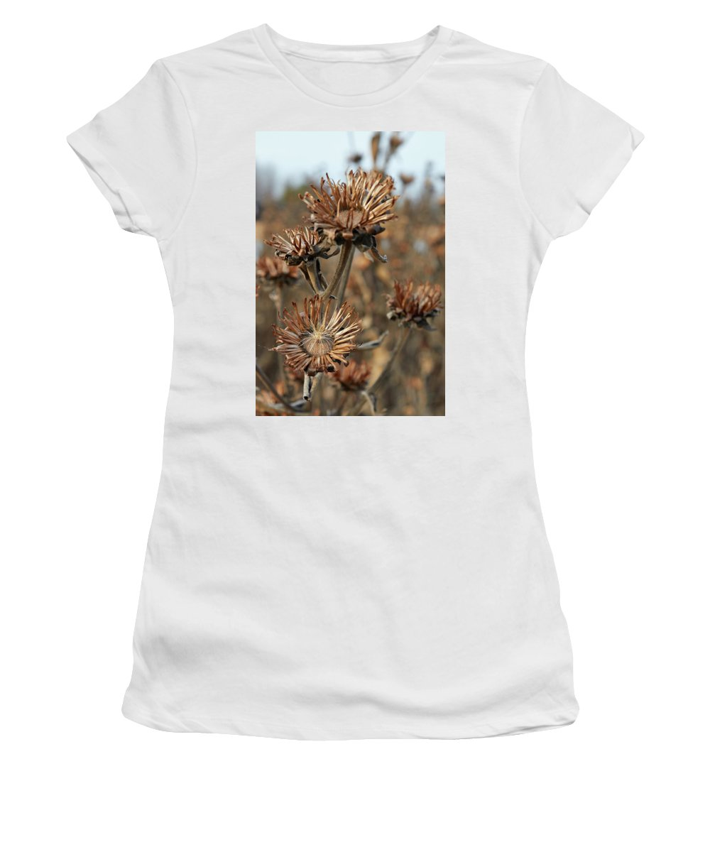 Weed Women's T-Shirt featuring the photograph Joy by Robert Rienzo