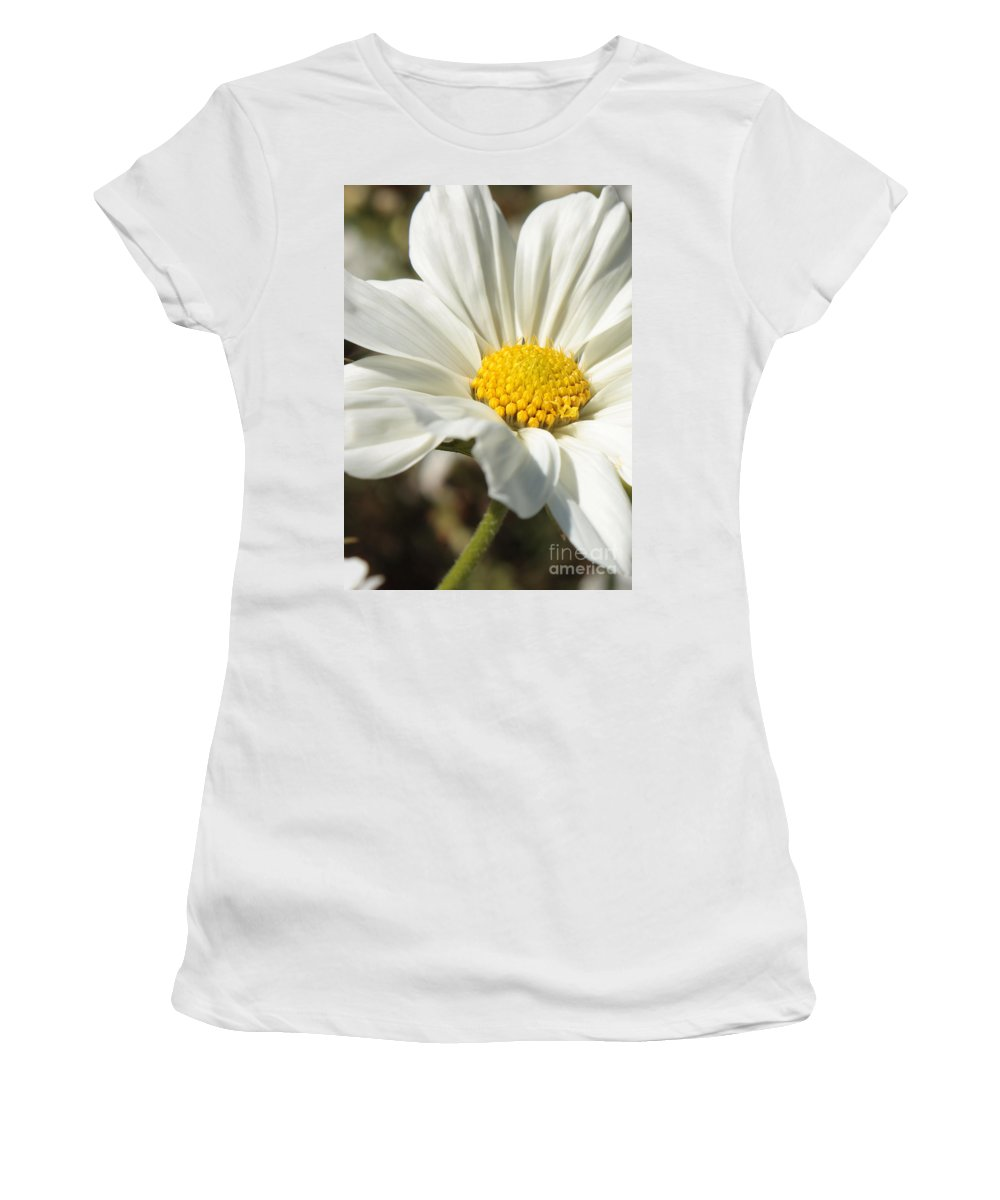 White Cosmos Women's T-Shirt (Athletic Fit) featuring the photograph Layers Of White Cosmos by Carol Groenen