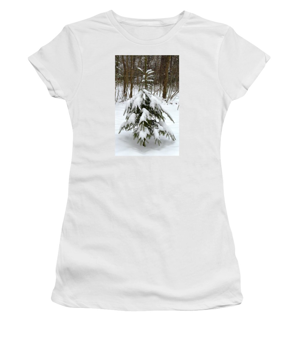 Christmas Women's T-Shirt (Athletic Fit) featuring the photograph Little Christmas Tree by Valerie Ornstein