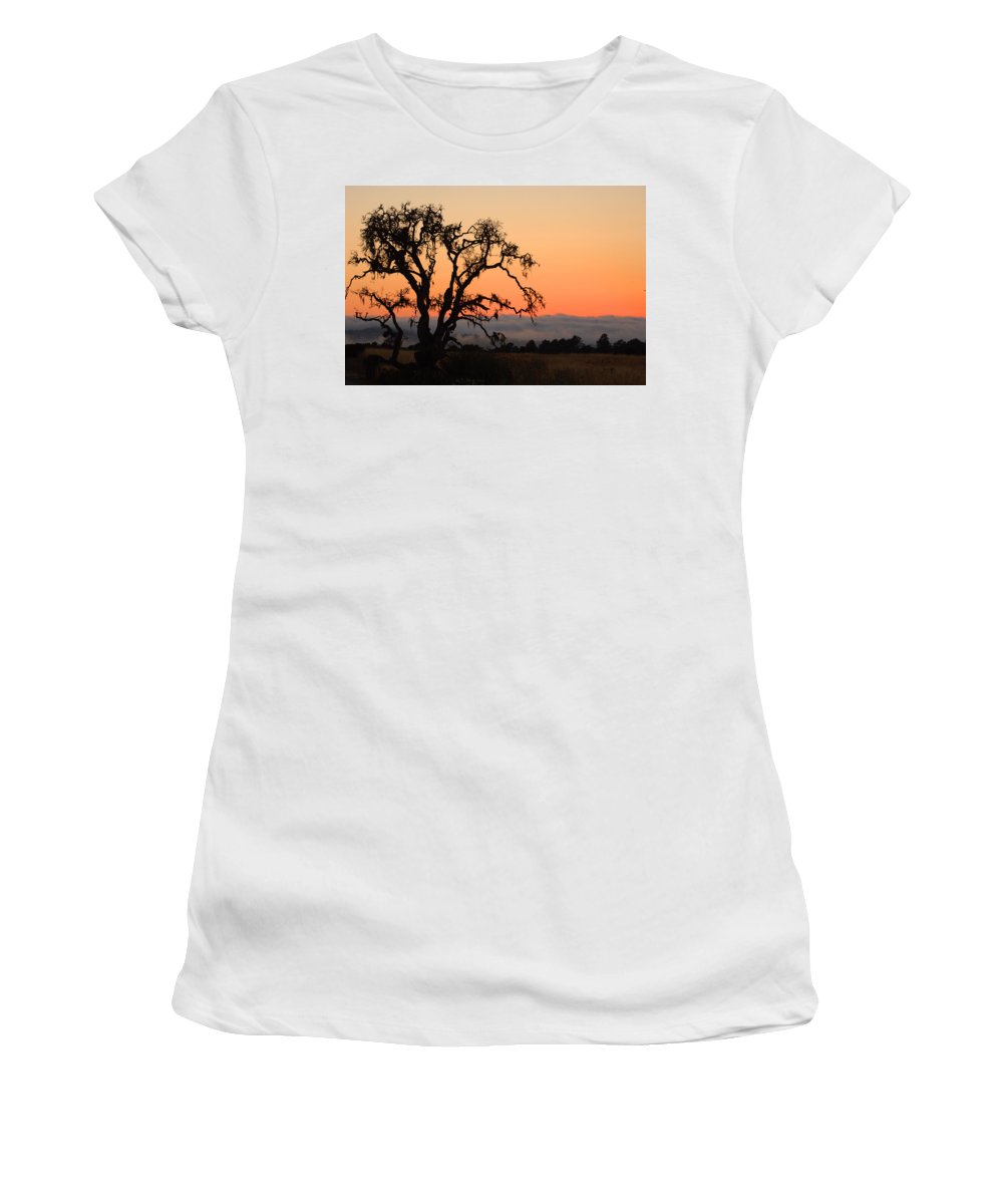 Tree Fog Landscape Weather Sunset Orange Nature Botanical Women's T-Shirt (Athletic Fit) featuring the photograph Loan Tree Overlooking Fog by Jill Reger