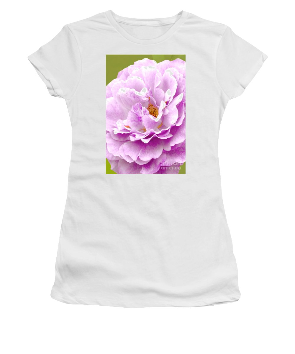 Rose Women's T-Shirt featuring the photograph Lovely In Lavender by Regina Geoghan