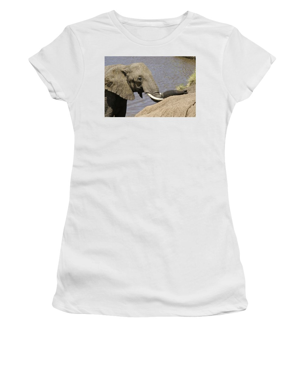 Africa Women's T-Shirt (Athletic Fit) featuring the photograph My Trunk Needs Drying Out by Michele Burgess