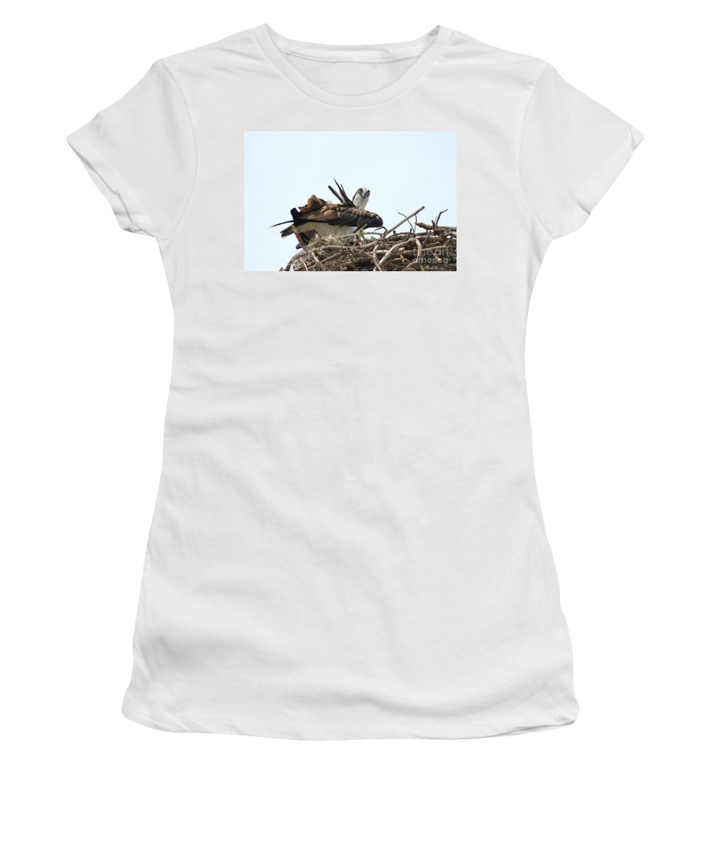Osprey Women's T-Shirt (Athletic Fit) featuring the photograph Nesting At Walmart by Deborah Benoit