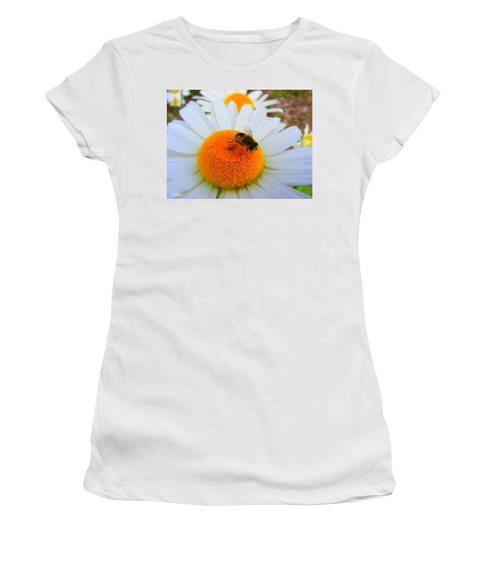 Orange Aid Women's T-Shirt featuring the photograph Orange Aid by Ed Smith