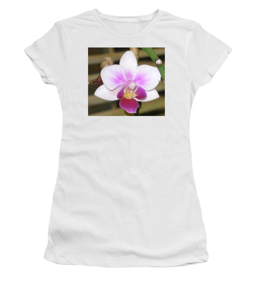 Purple Women's T-Shirt featuring the photograph Orchid Explosion by Maria Bonnier-Perez