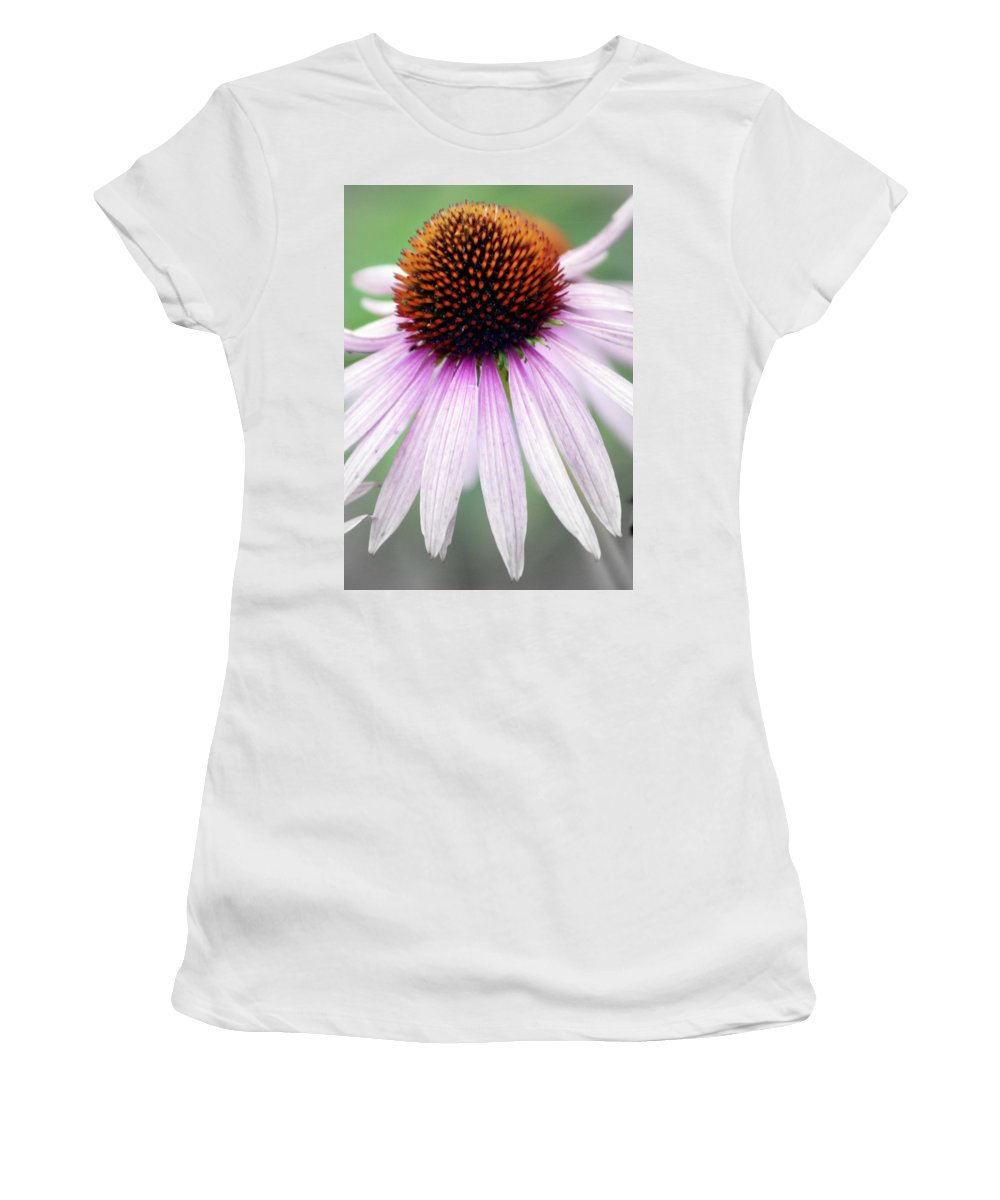 Flowers Women's T-Shirt featuring the photograph Pale Grey by Marty Koch