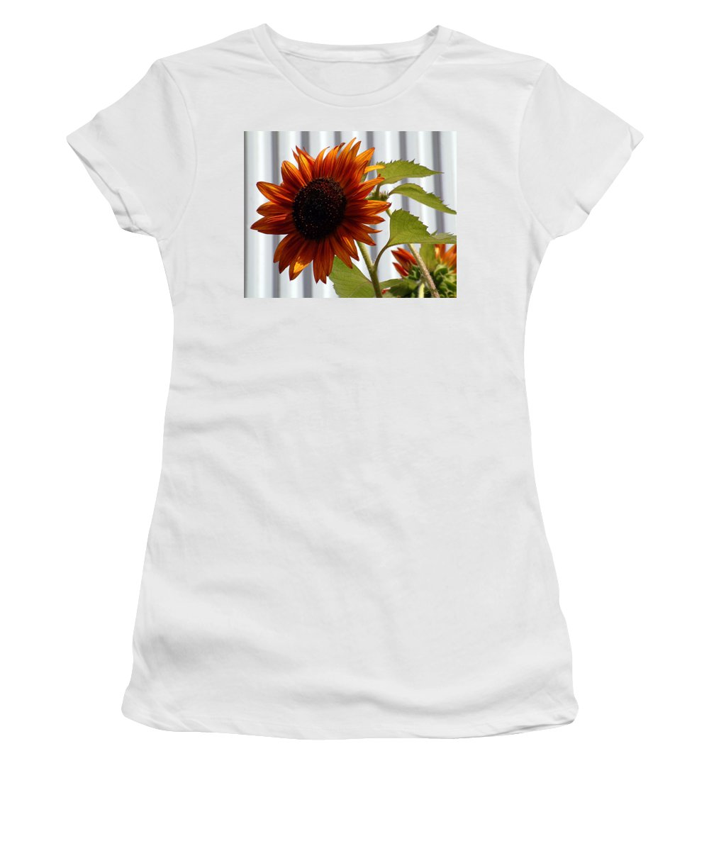 Brown Women's T-Shirt featuring the photograph Peerless by RC DeWinter