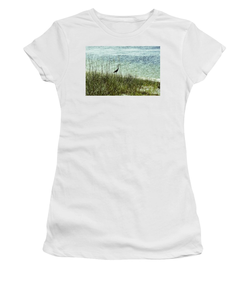 Heron Women's T-Shirt featuring the photograph Pensacola Shore Bird by Laurie Perry