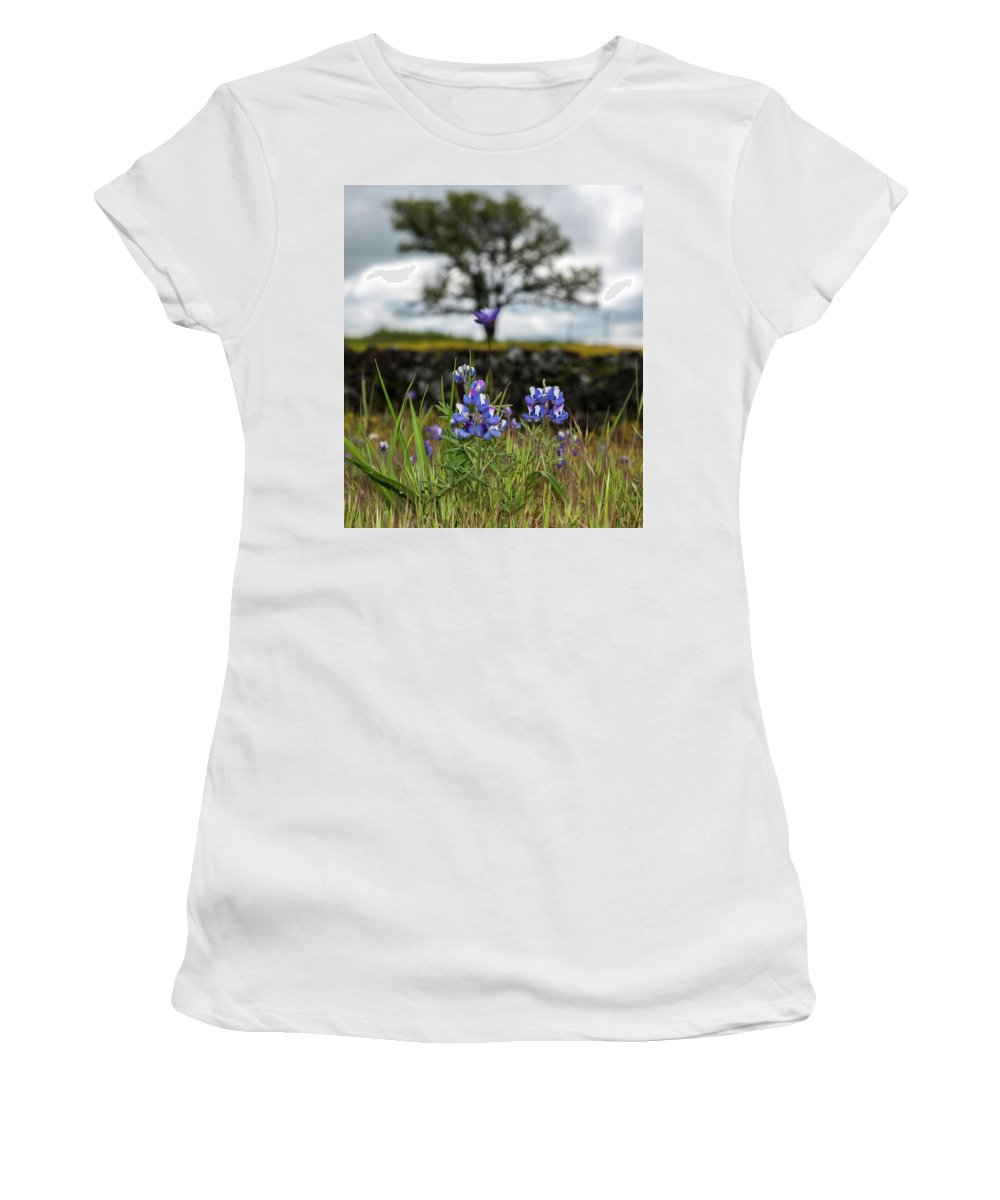 Table Mountain Women's T-Shirt (Athletic Fit) featuring the photograph Pocket Of Lupines by Barbara Matthews