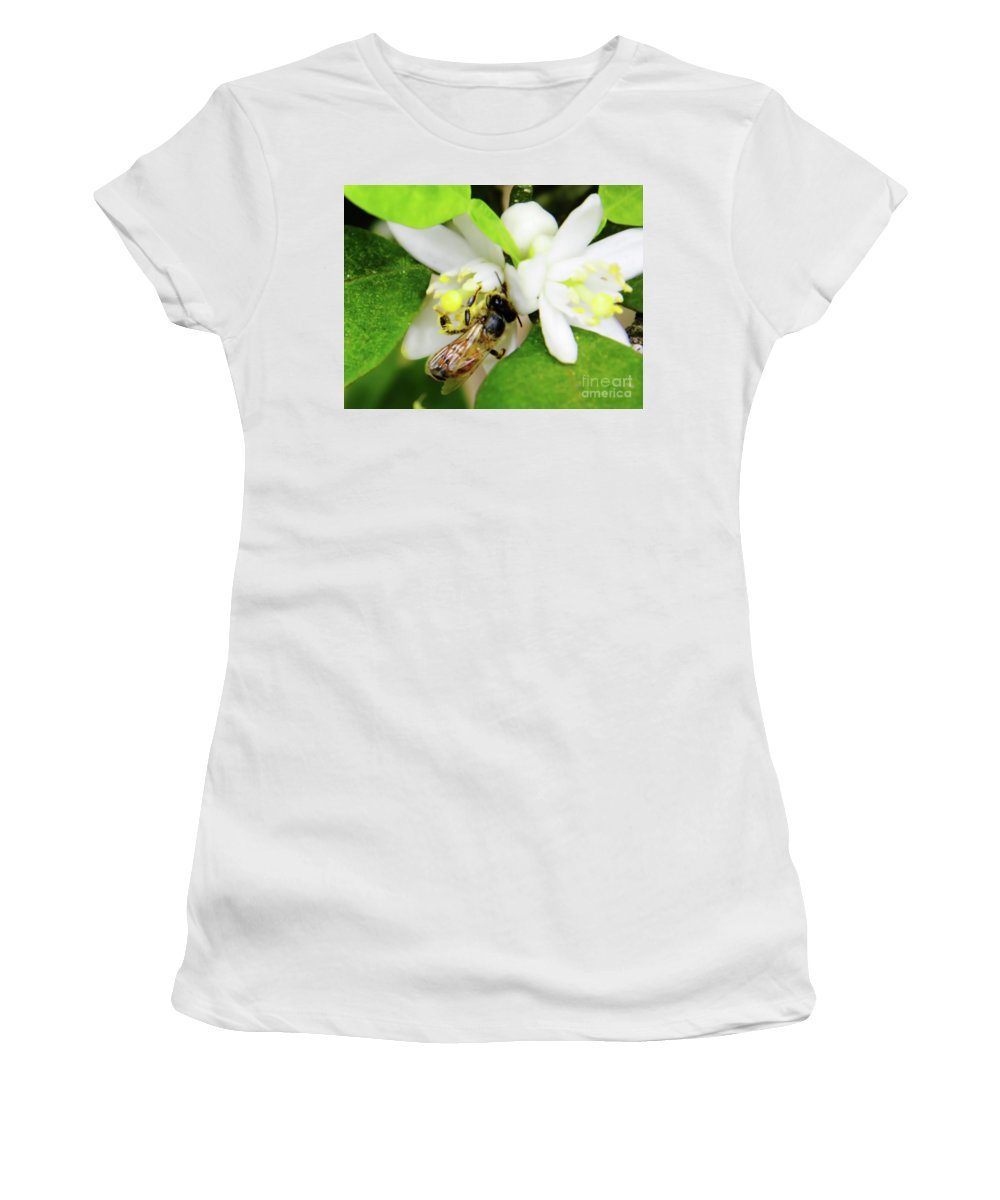 Orange Blossom Women's T-Shirt featuring the photograph Pollen - Covered - Bee by D Hackett