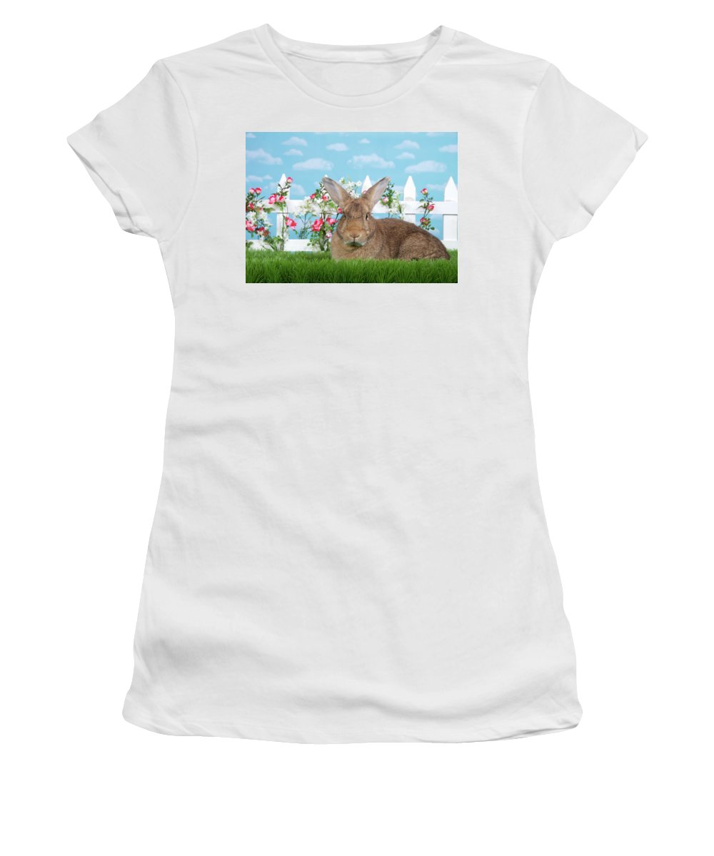 Easter Women's T-Shirt (Athletic Fit) featuring the photograph Portrait Of A Gregarious Brown Bunny by Sheila Fitzgerald