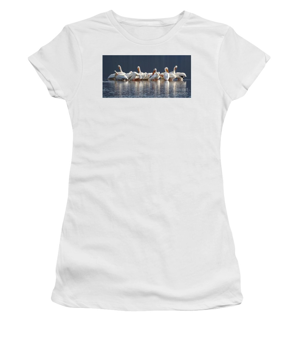 American White Pelican Women's T-Shirt featuring the photograph Preening Pelicans by Angela Koehler
