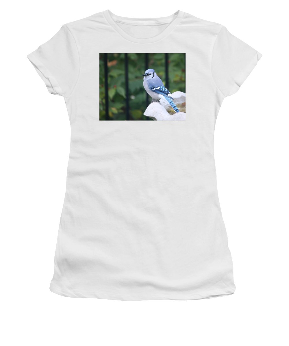 Pretty Women's T-Shirt (Athletic Fit) featuring the photograph Pretty In Blue Jay by Diane Lindon Coy