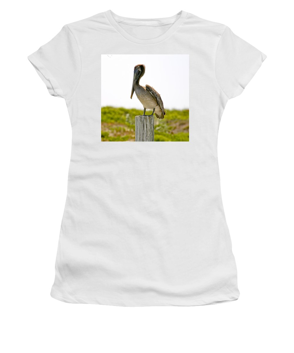 Pelican Women's T-Shirt (Athletic Fit) featuring the photograph Pretty Pelican by Marilyn Hunt
