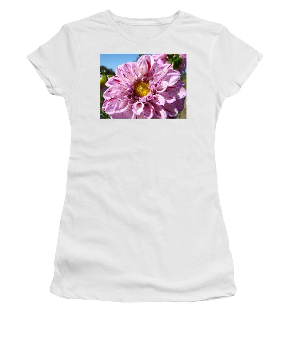 Dahlia Women's T-Shirt featuring the photograph Purple Dahlia Flowers Pink Floral Art Prints Canvas Garden Baslee Troutman by Baslee Troutman