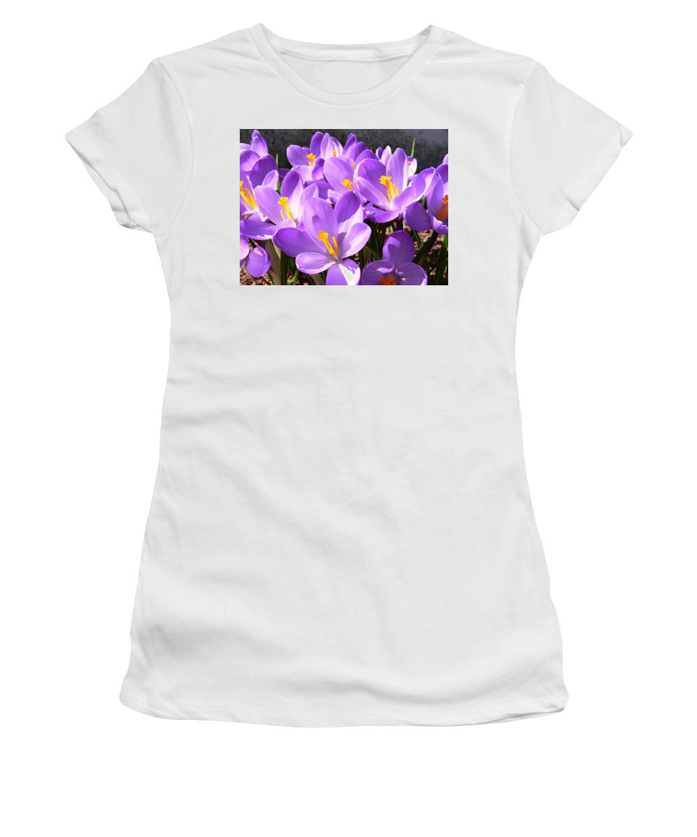 New England Photos Women's T-Shirt (Athletic Fit) featuring the photograph Purple Morning by Nancie DeMellia