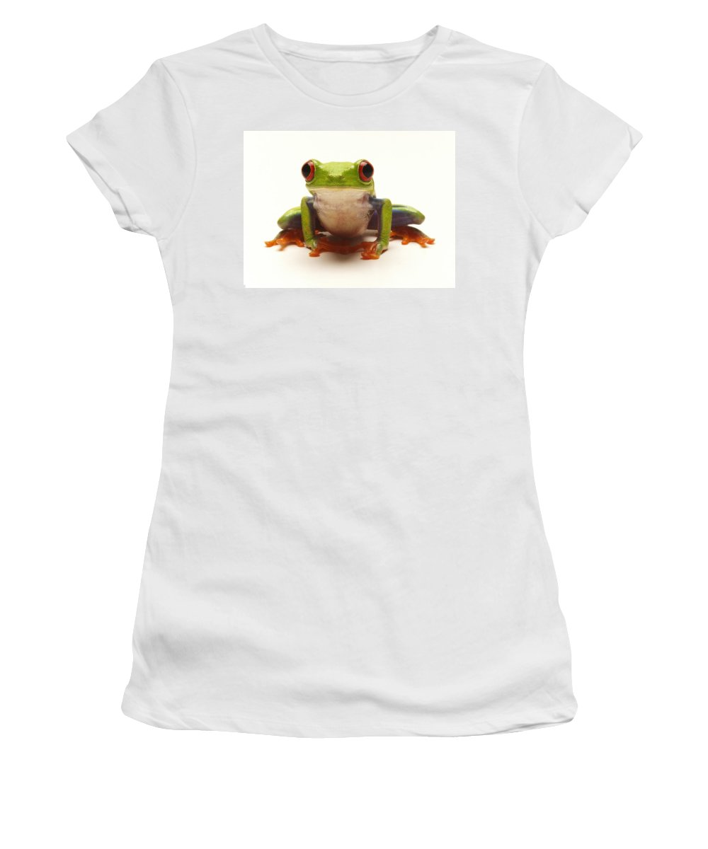 Frog Women's T-Shirt (Athletic Fit) featuring the photograph Red-eyed Tree Frog by Steve Williams