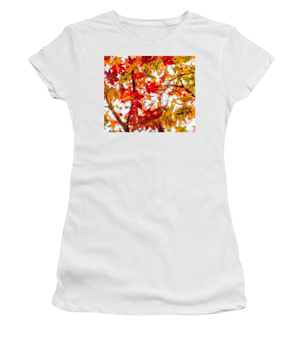 Red Women's T-Shirt (Athletic Fit) featuring the photograph Red On A Tree by Hyuntae Kim