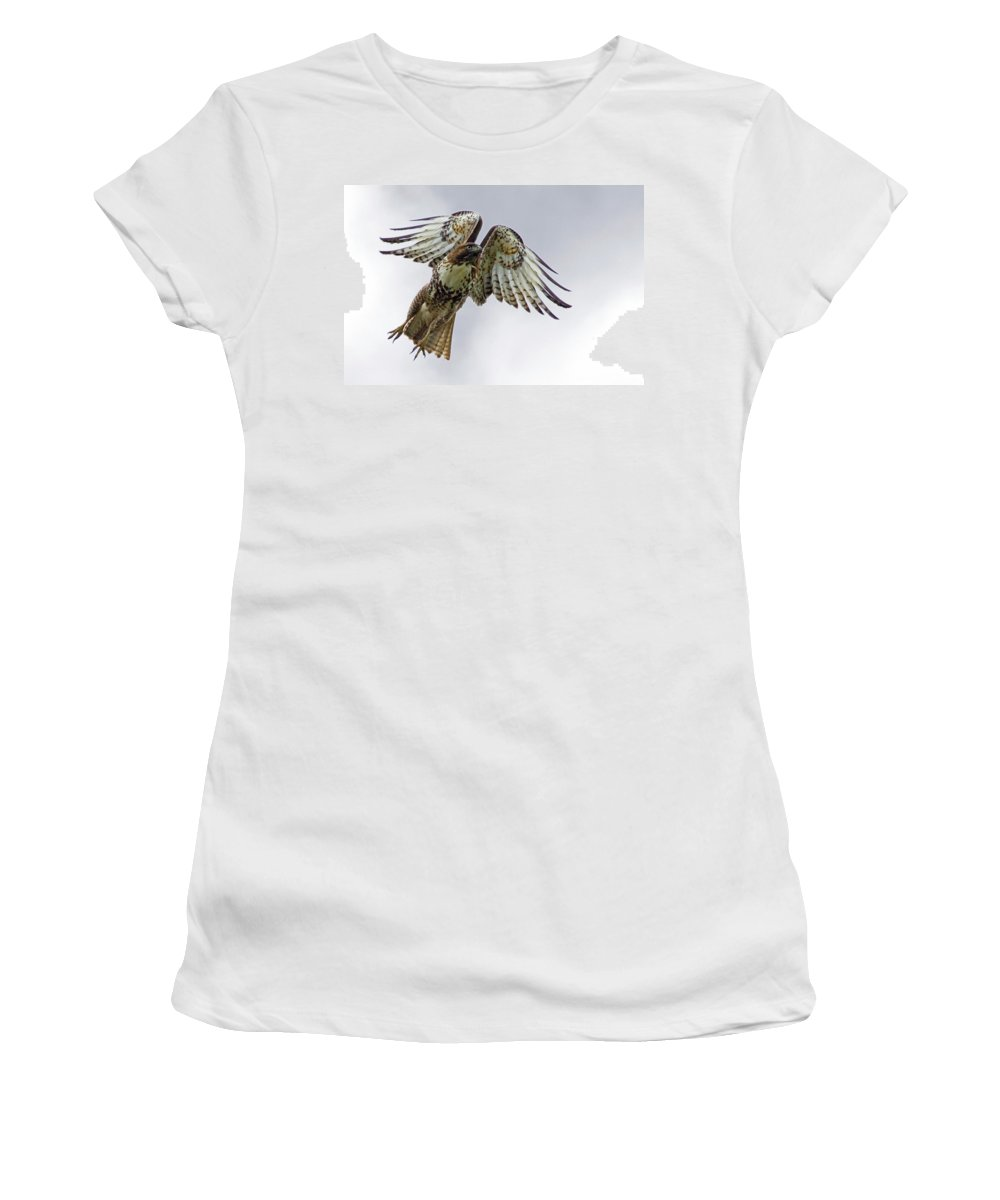 Hawk Women's T-Shirt featuring the photograph Red Tail Takeoff by Randall Ingalls