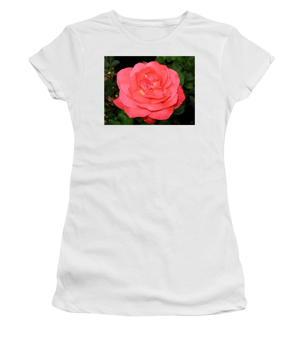 Rose Women's T-Shirt (Athletic Fit) featuring the photograph Roses 3 by Will Borden