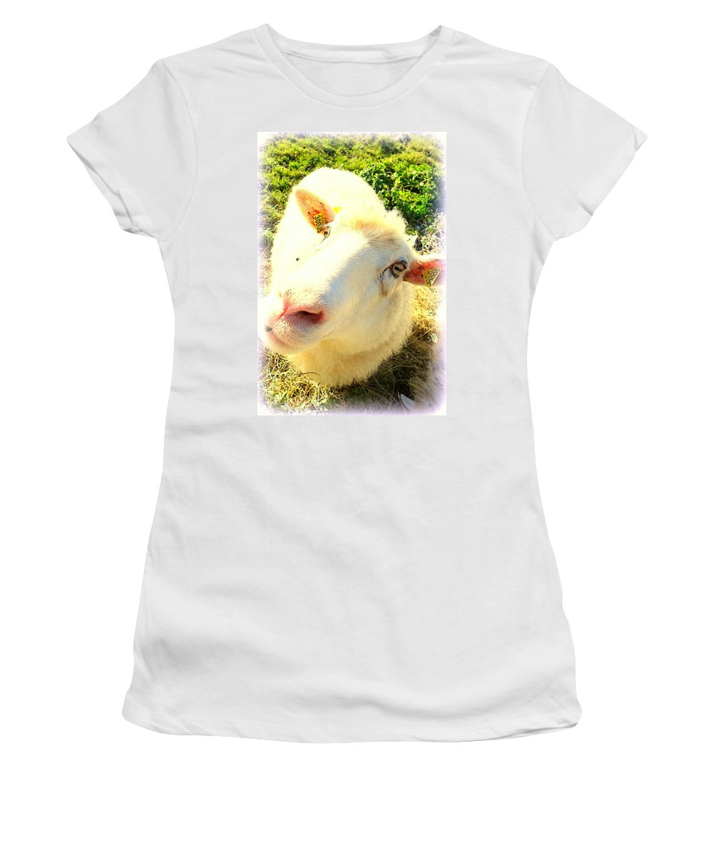 Faces Women's T-Shirt featuring the photograph So Sheep Of You To Leave Me Here by Hilde Widerberg