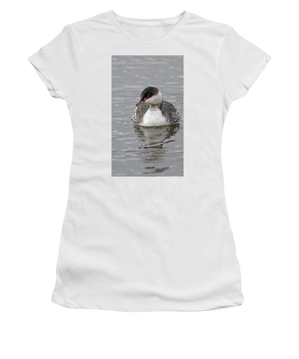 Slavonian Grebe Women's T-Shirt (Athletic Fit) featuring the photograph Slavonian Grebe With Fish by Bob Kemp