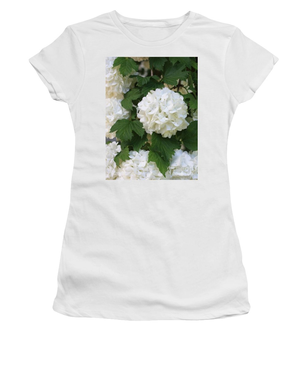 Snowball Tree Women's T-Shirt (Athletic Fit) featuring the photograph Snowball Tree With Delicate Leaves by Carol Groenen