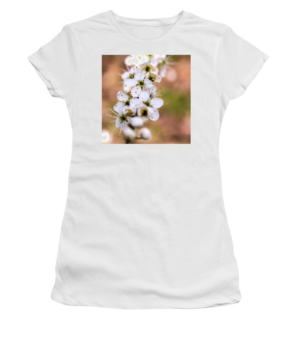 Spring Women's T-Shirt (Athletic Fit) featuring the photograph Spring Blossom by Nick Bywater