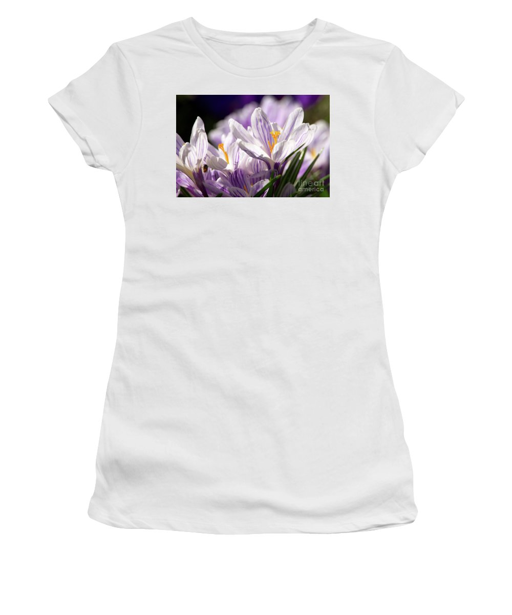 Crocus Women's T-Shirt featuring the photograph Springtime Color by Sharon Talson