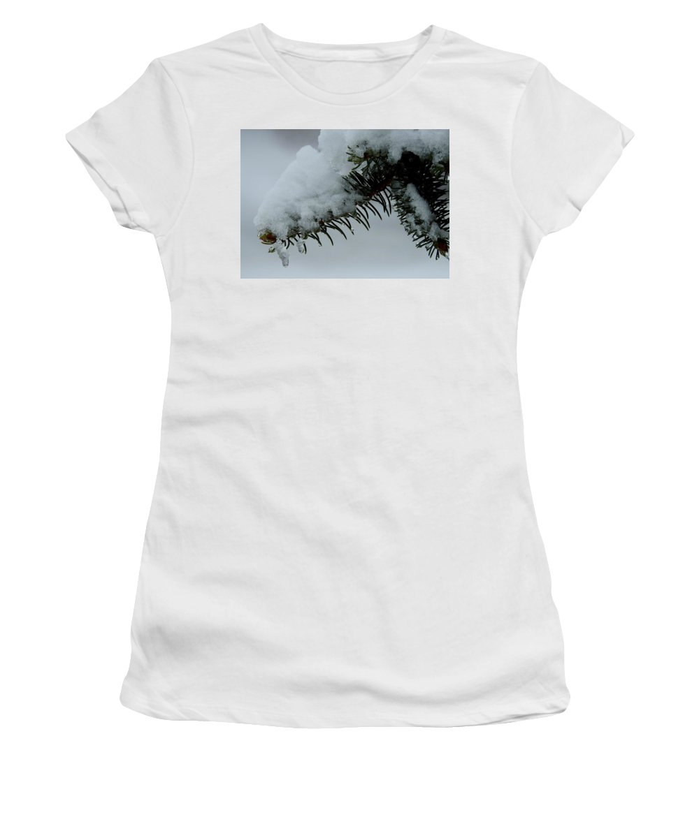 Spruce Women's T-Shirt (Athletic Fit) featuring the photograph Spruce Needles And Ice by Betty-Anne McDonald