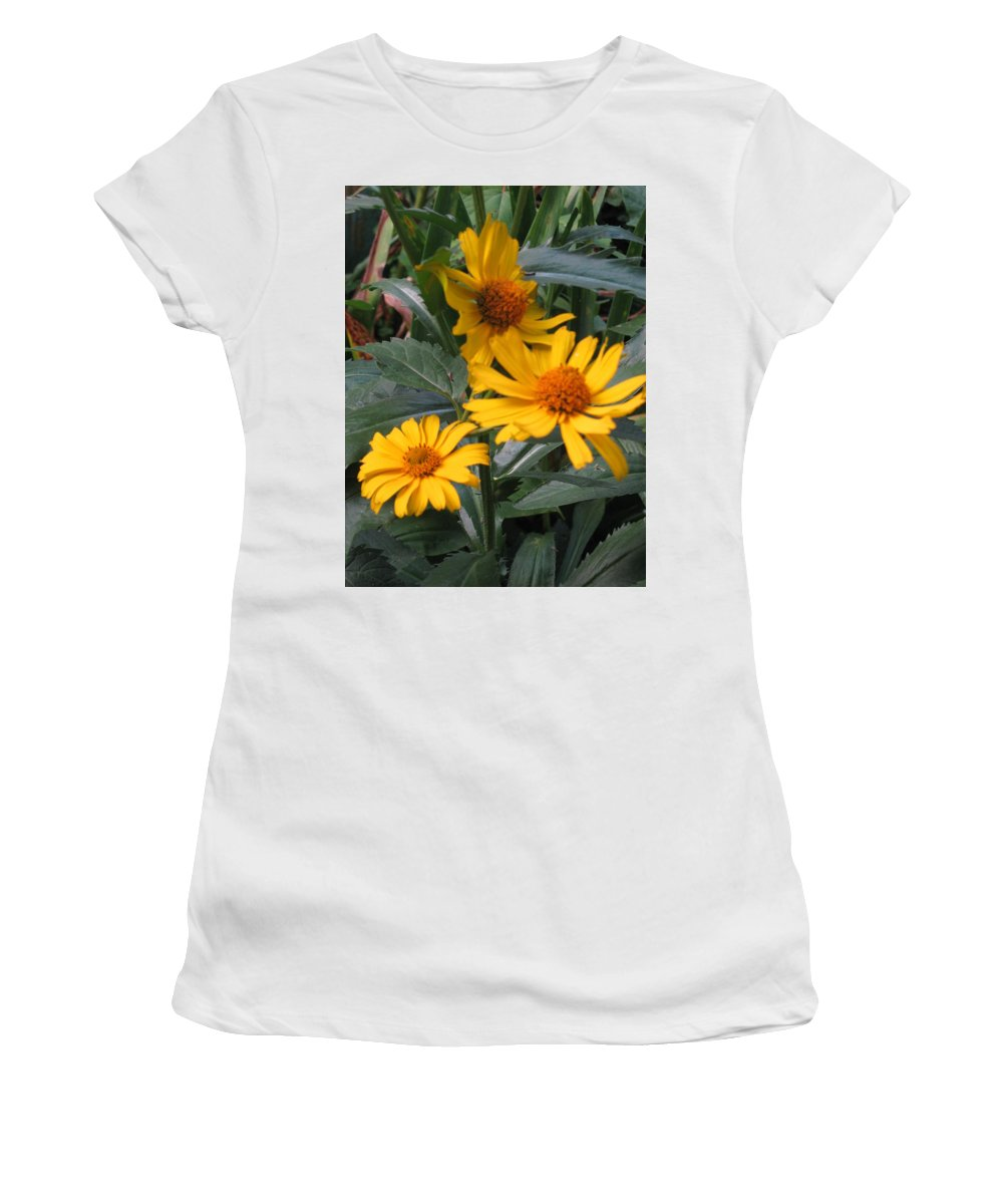 Nature Women's T-Shirt (Athletic Fit) featuring the photograph Summertime by Rose Dellinger