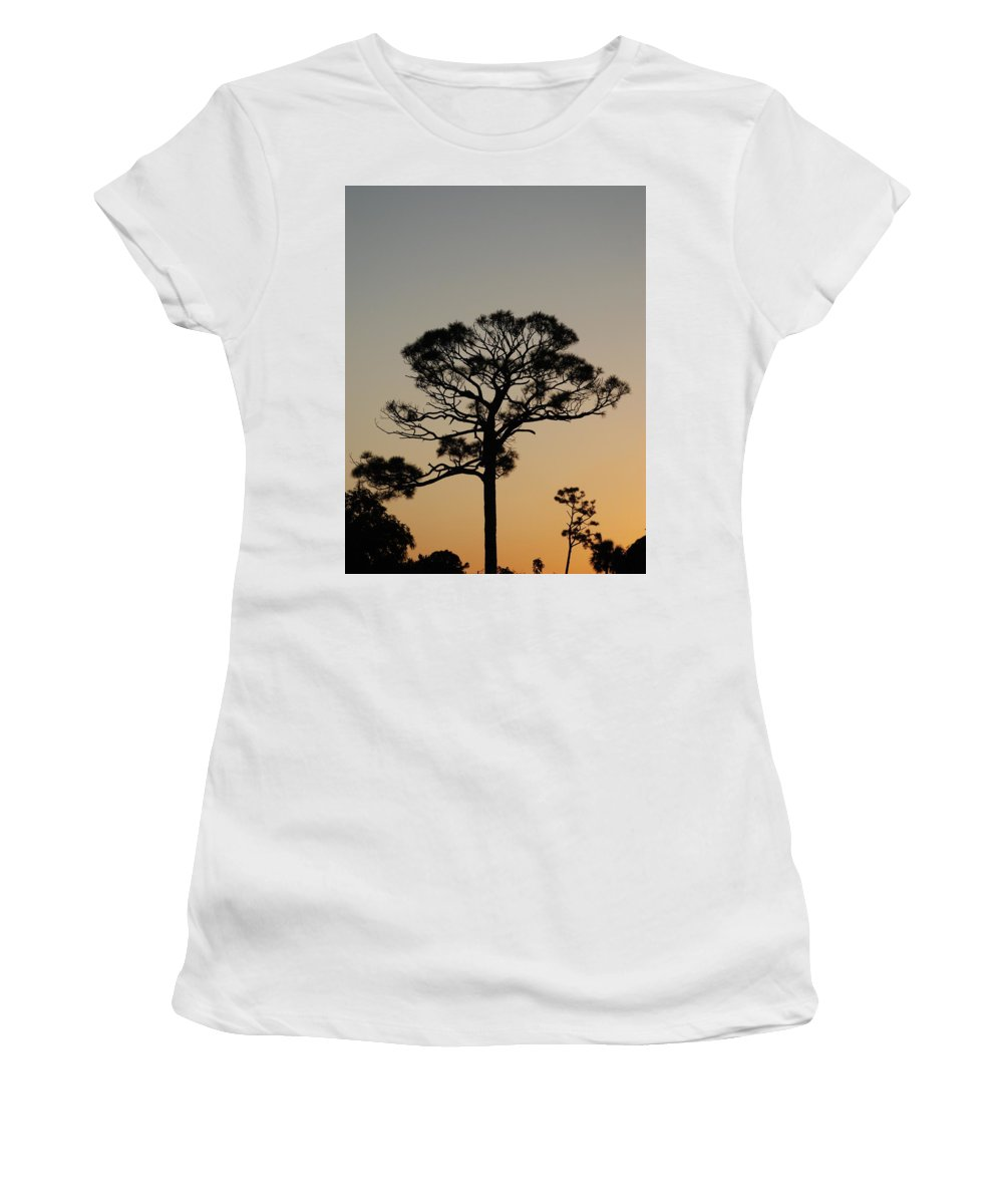 Tree Women's T-Shirt (Athletic Fit) featuring the photograph Sunsetting Trees by Rob Hans