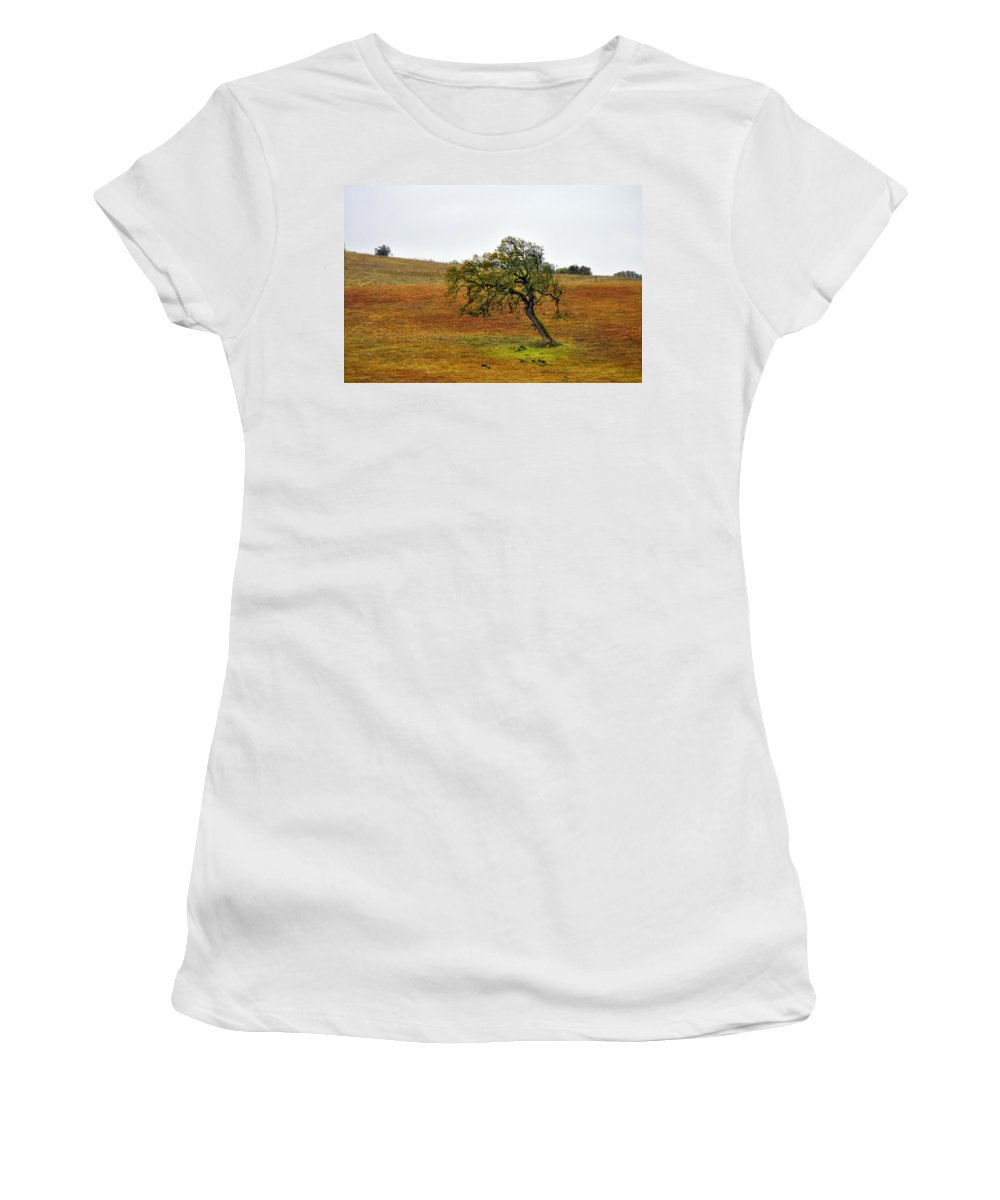 Tree Women's T-Shirt (Athletic Fit) featuring the photograph Surviving by Shannon Nickerson