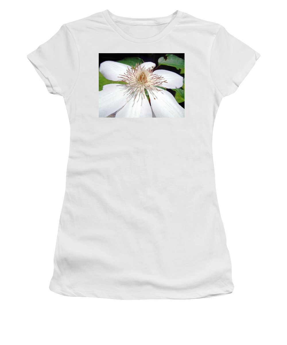 Clematis Women's T-Shirt (Athletic Fit) featuring the photograph Tattered And Torn by RC DeWinter