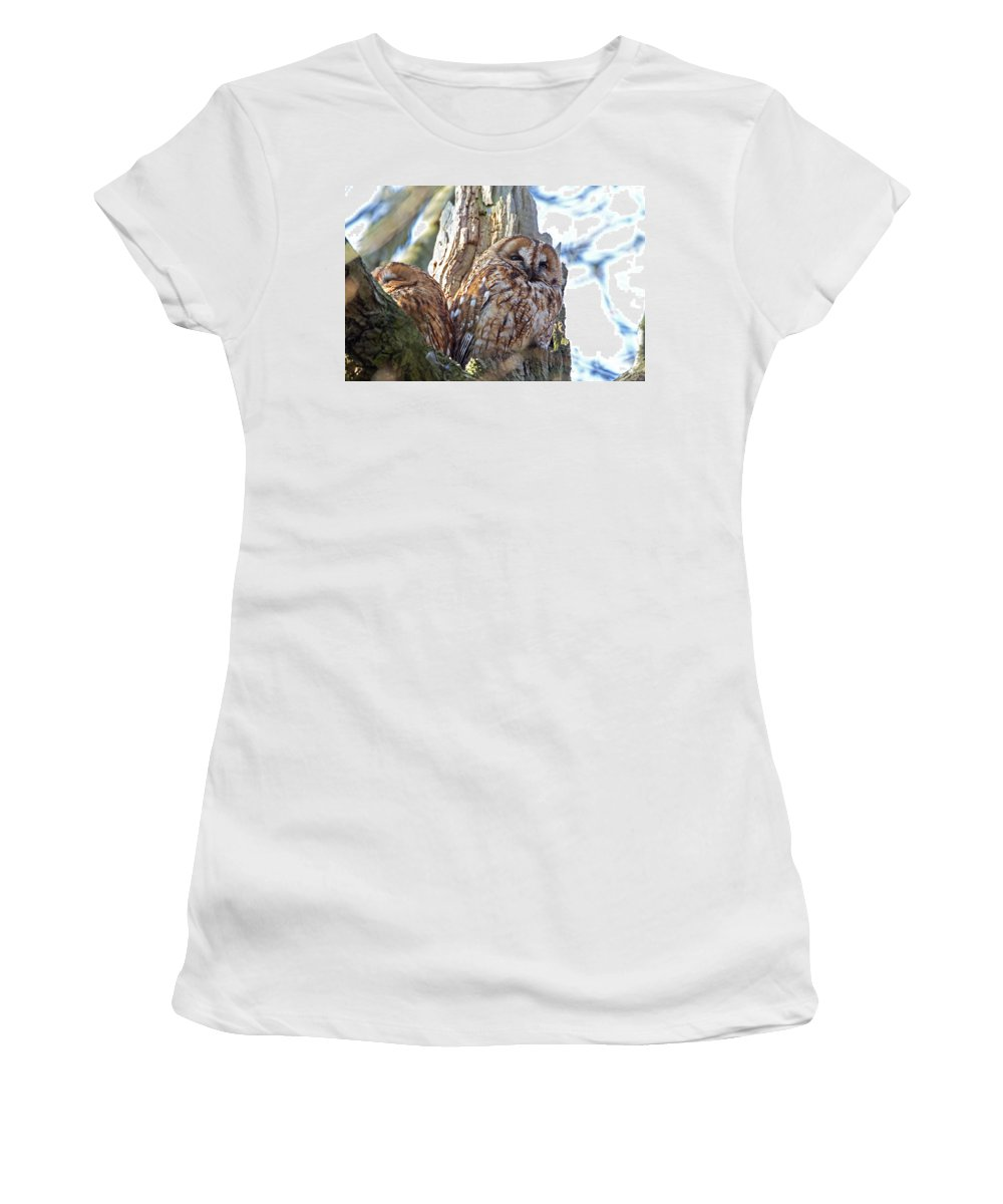 Tawny Owl Women's T-Shirt (Athletic Fit) featuring the photograph Tawny Owls by Bob Kemp