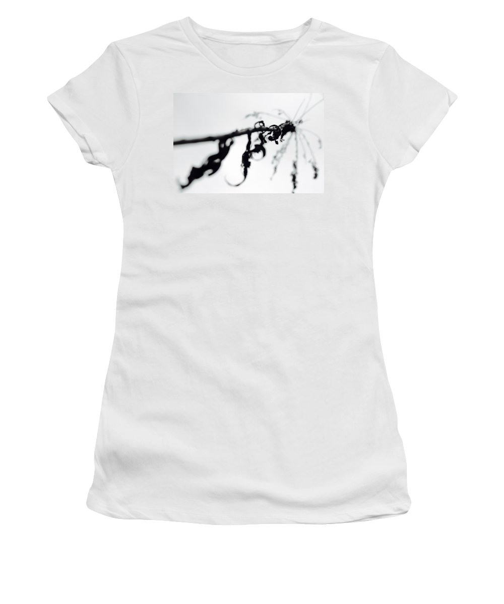 Branch Women's T-Shirt (Athletic Fit) featuring the photograph The Dead 177 by Shelly John