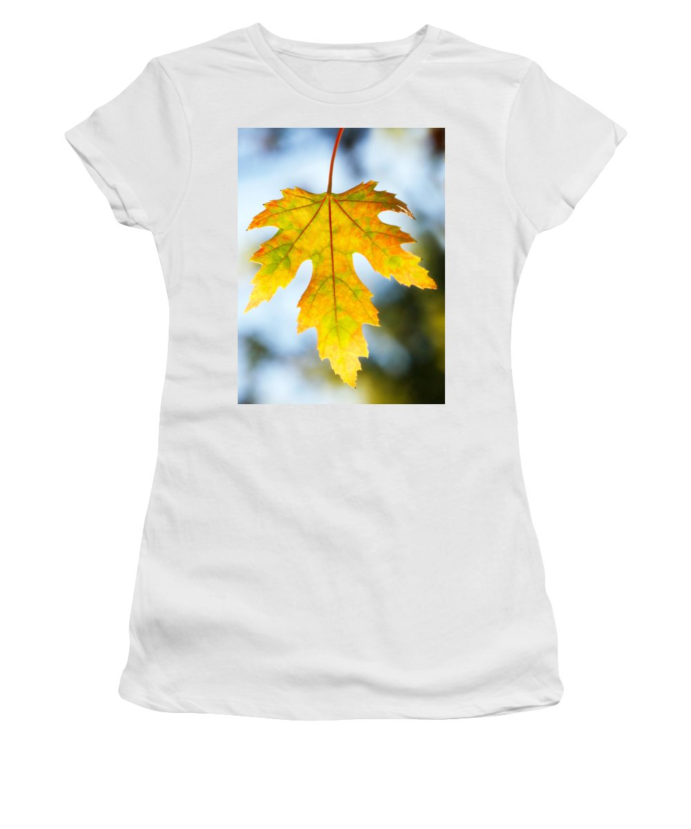 Maple Women's T-Shirt (Athletic Fit) featuring the photograph The Maple Leaf by Marilyn Hunt