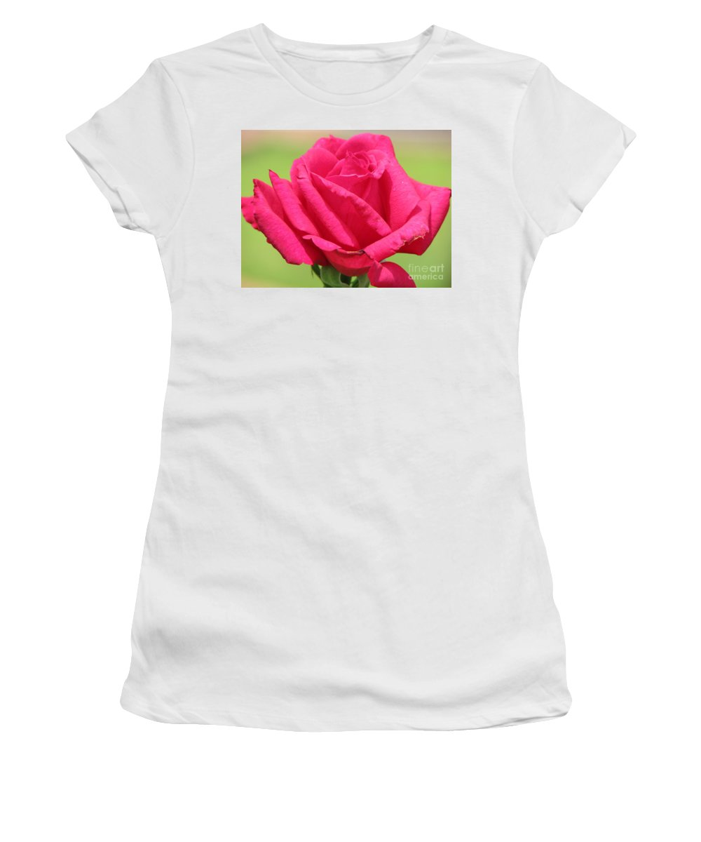 Roses Women's T-Shirt (Athletic Fit) featuring the photograph The Rose by Amanda Barcon