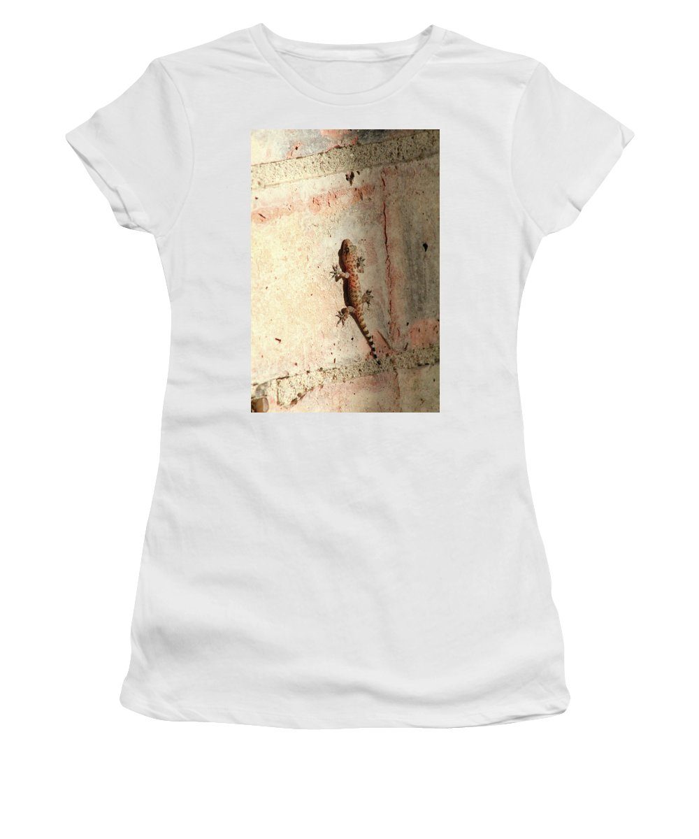Wall Women's T-Shirt featuring the photograph The Wall Walker by Alycia Christine