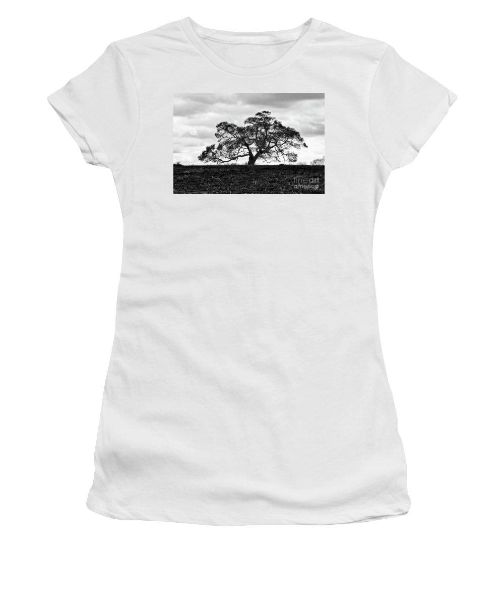 Oak Tree Women's T-Shirt featuring the photograph Tortue Oak by Scott Pellegrin