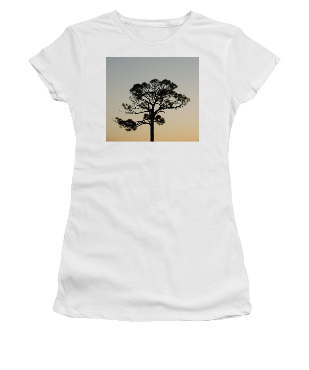 Tree Women's T-Shirt (Athletic Fit) featuring the photograph Trees In Sunset by Rob Hans