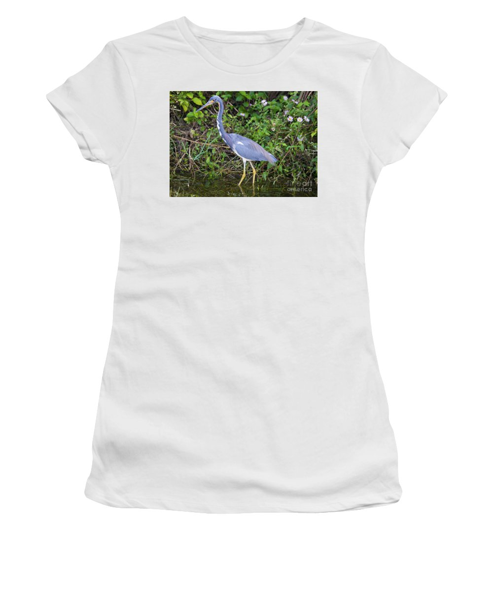 Heron Women's T-Shirt featuring the photograph Tricolored Heron Hunting by Mike Dawson
