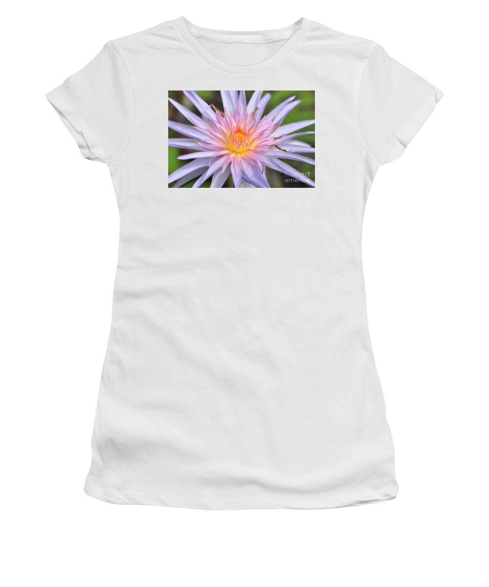 Water Lily Women's T-Shirt (Athletic Fit) featuring the photograph Water Lily 20 by Allen Beatty