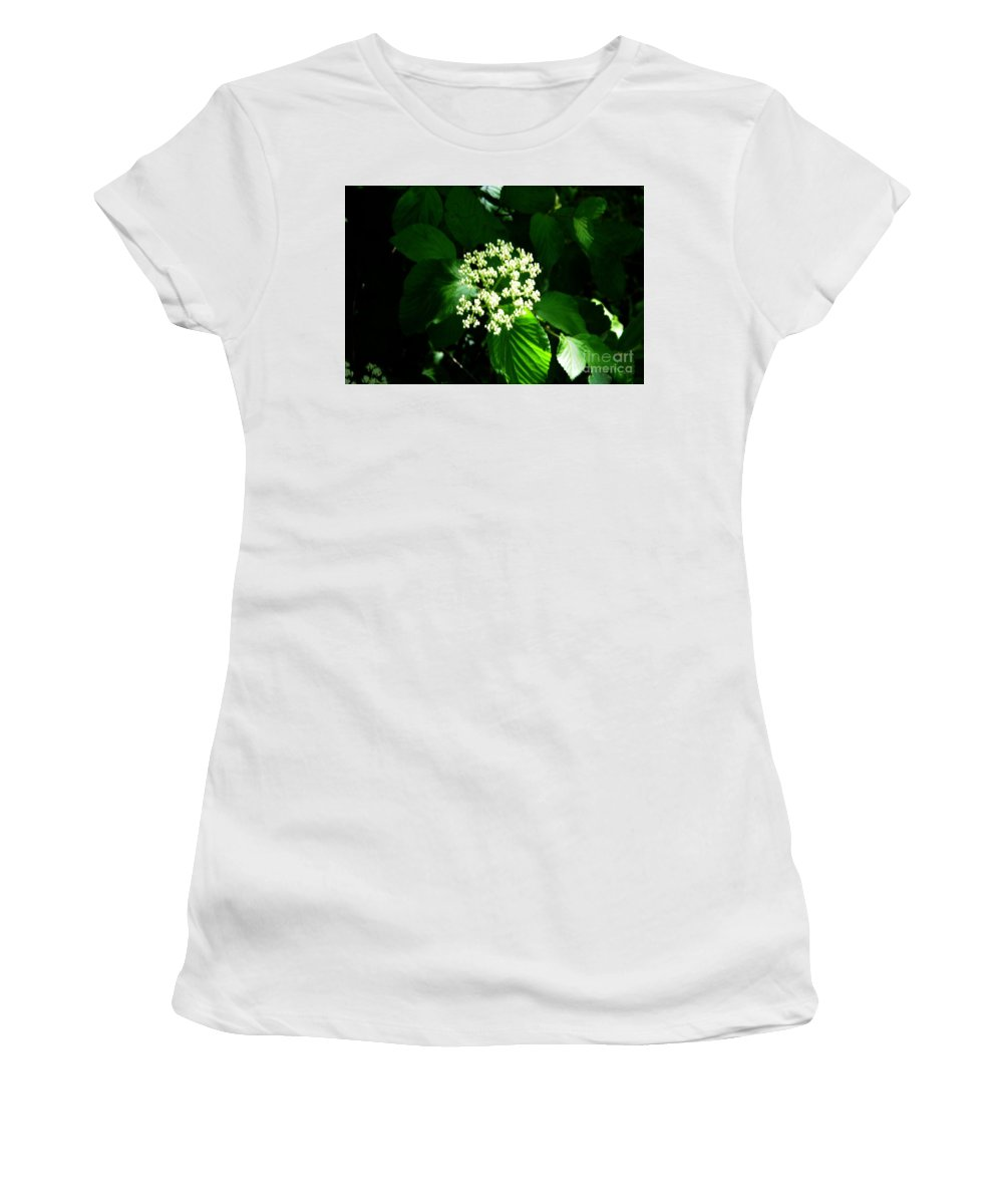 Flower Women's T-Shirt featuring the photograph White Flower by Kathleen Struckle