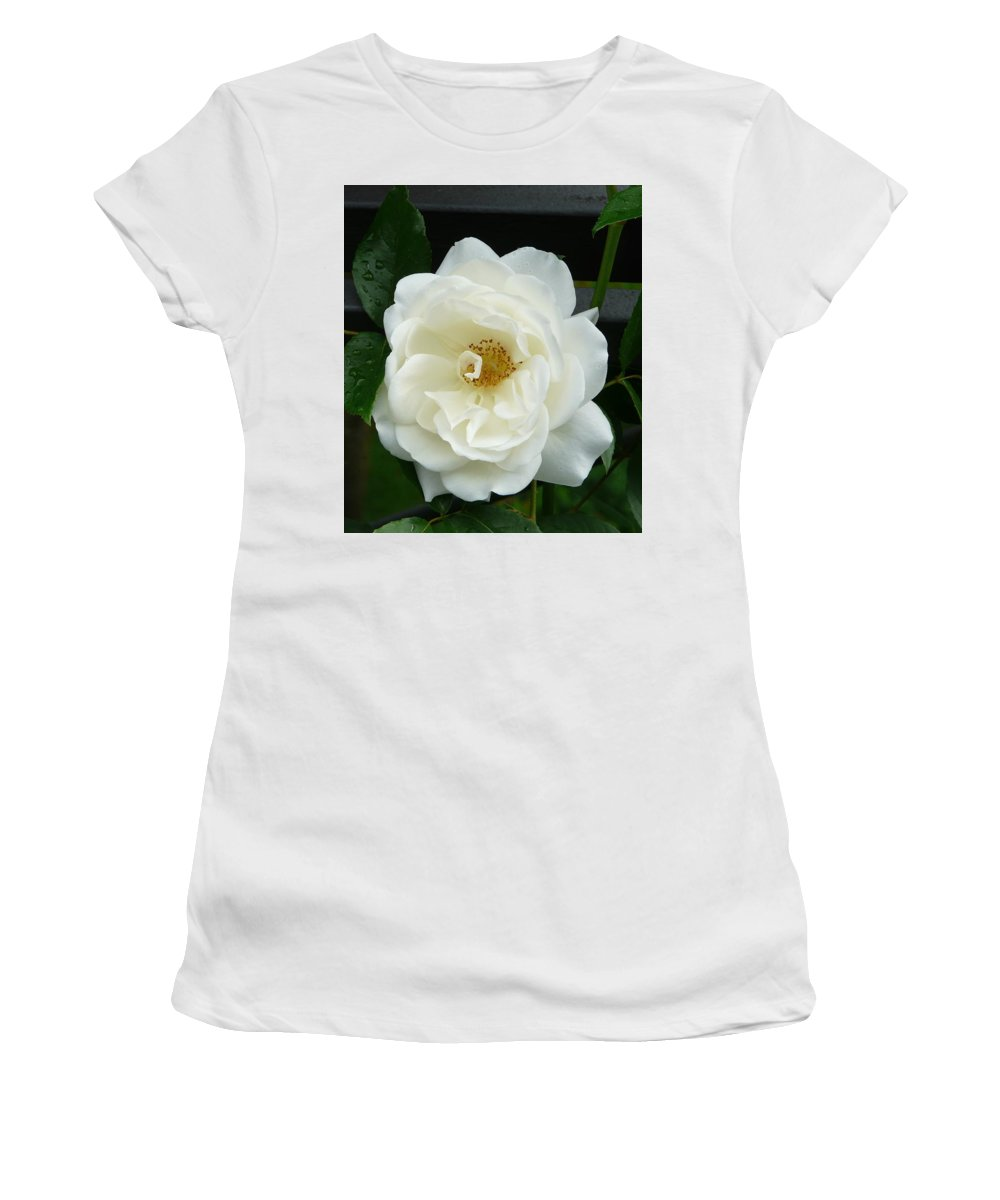 Rose Women's T-Shirt (Athletic Fit) featuring the photograph White Rose by Valerie Ornstein