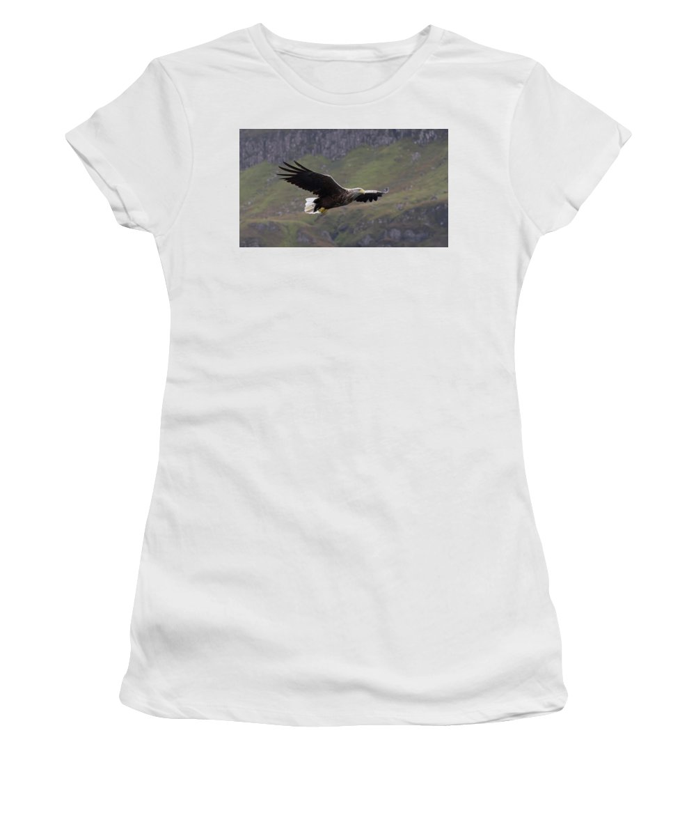 White-tailed Eagle Women's T-Shirt featuring the photograph White-tailed Eagle Approaches by Peter Walkden